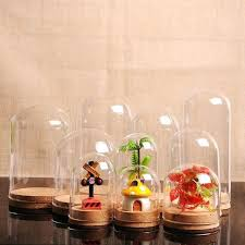glass bell dome x terrarium glass bell bottle dome shape transpa jar with cork bottom mini glass bell dome