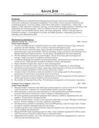 Resume Programnager Example Free Templates Sample India Production