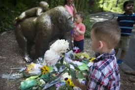 zoos aren t your babysitter parenting critics flay mom after zoos aren t your babysitter parenting critics flay mom after gorilla shot to protect her preschooler the washington post