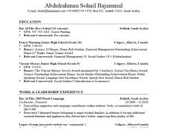 examples of resume titles cyrinesdesign