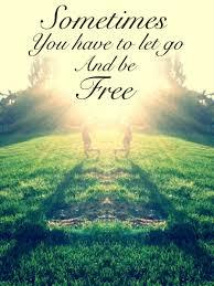 Your Freedom Quotes. QuotesGram via Relatably.com