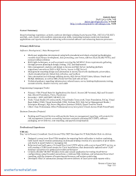 Forensic Report Template Cool Best Accounting Resume Summary