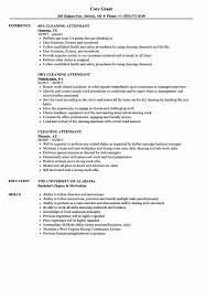 Valet Parking Resume Sample Valet Parking Resume Sample Best Of Cleaning Attendant Resume 16