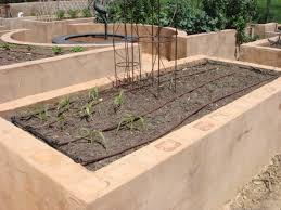 Small Picture Raised Vegetable Gardens