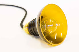 eco friendly lighting. Wonderful Eco And Eco Friendly Lighting