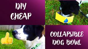 HOW TO MAKE A COLLAPSIBLE DOG BOWL | CHEAP DOG HACK | DIY | SIMPLE | CHEAP |
