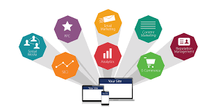 Digital Marketing Agency Tampa, Search Engine Optimization, Web Design