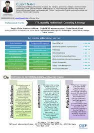 Visual Resume Template Visual Resume Samples Kardasklmphotographyco 10