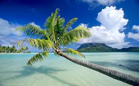 Beach Picture 30 Hd Tropical Beach Backgrounds