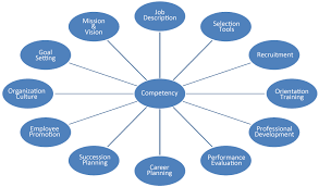 What Are Skills And Abilities Job Competencies Bassett Unified School District Personnel