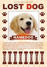 Dog Flyer Template Free Lost Dog Free Flyer Template Download For Photoshop