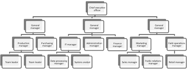 organisations   acca qualification   students   acca globalfigure  shows a typical organisation chart