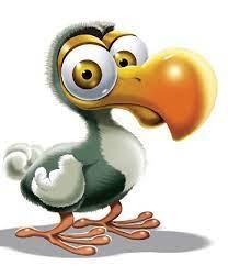Les libraires de la librairie Vaugeois aiment… Cosmo le dodo, de PatRac |  La librairie Vaugeois