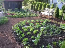 inspiring vegetable garden design ideas