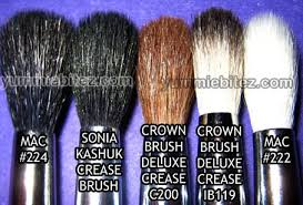 crown brush review. the brushes seem to have same density feeling across board. however, mac 224 has a wider brush head compared both crown brush. review