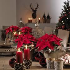 Blumentrends Und Deko Für Advent Und Weihnachten Urfahr