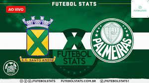 Como assistir Santo André x Palmeiras Futebol AO VIVO – Campeonato Paulista  2021 - Futebol Stats