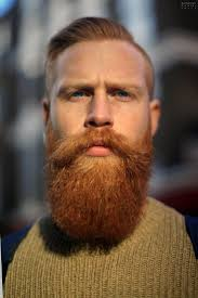 Scruffy Facial Hair Style 416 best awesome beard styles for men images 5777 by wearticles.com