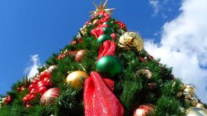 When Should You Take Down Your Christmas Tree  Liverpool EchoWhat Day Do You Take Your Christmas Tree Down On