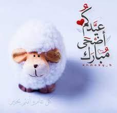 رسائل تهنئة عيد الأضحى المبارك 1441 للأهل والأحباب وكل عام وأنتم بخير