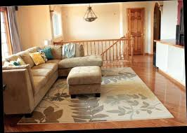 Small Living Room Area Rug Placement Ideas for Living Room Area