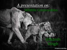 wildlife conservation in ppt