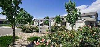 arbor garden. Arbor Garden Town Homes In Evans, Colorado For UNC Students, Aims