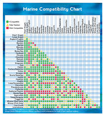 Marine Animal Compatibility Chart Visual Ly