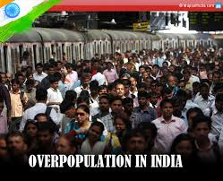 overpopulation in causes effects stats and how to image of overpopulation in