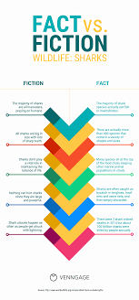 Comparison Infographic Template 20 Comparison Infographic Templates And Data Visualization Tips