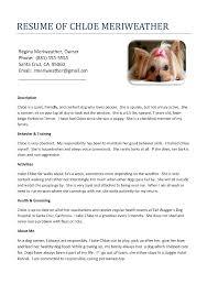 Dog Resume Resume For Study