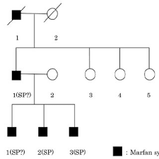 Three Generation Pedigrees Showing Family Members With