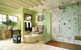 bathroom without bathtub design ideas