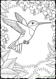 Small Picture Hummingbird Coloring Pages Flying Coloring Pages 21475