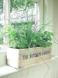 indoor window garden. herb window box best of windowsill planter indoor garden kitchen