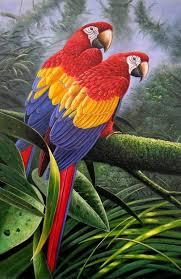 bird painting 082 bird painting 083
