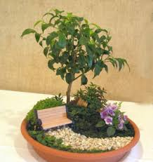 Small Picture Dish Gardens Designs Markcastroco