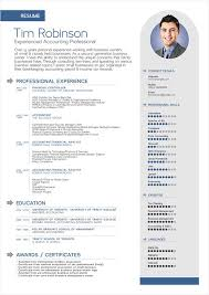 Cv Format It Professional Free Simple Professional Resume Template In Ai Format