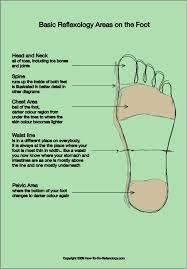 Pressure Points On Bottom Of Feet Chart Foot Reflexology Chart Complete Guide For Reflexology Foot