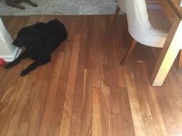 bleached jarrah floor finished in water based sealant perth laminate flooring waterproof sealant full