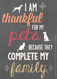 Pet Quotes Inspiration Repin If Your Pets Are Part Of Your Family As A Veterinarian Crew