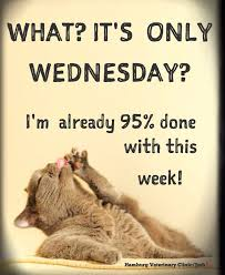 Wednesday Humor Happy Hump Day Mid Week Halfway There Animal