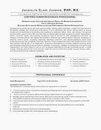 Problem Solving Resume