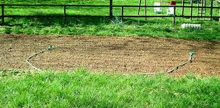 Small Picture Vegetable Garden Planning and Layout Todays Homeowner