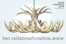 full size of deer antler lighting uk white chandelier real tail oblong 5 within lighting fixtures