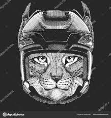 дикая кошка Bobcat Lynx рысь диких животных носить хоккейный шлем