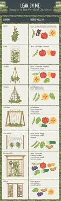 Small Picture Best 25 Trellis ideas only on Pinterest Trellis ideas Flower
