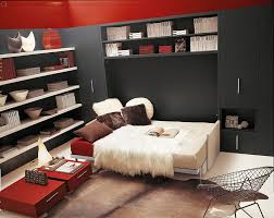 view in gallery space saving murphy bed and sofa with additional storage units