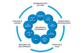 Who Social Determinants Of Health