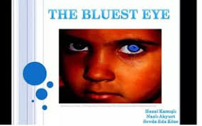 thesis statement about the bluest eye  thesis statement about the bluest eye